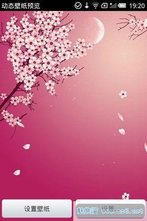 浪漫樱花动态壁纸Sakura Wallpaper 1.2.8汉化版