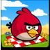 愤怒的小鸟之夏日野餐 V1.5.1 for Android